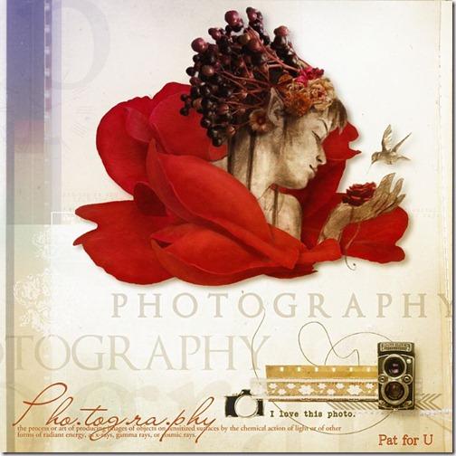 Roses et Nature 14062012
