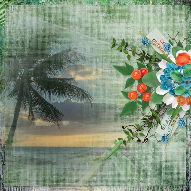 Cette image a un attribut alt vide; le nom du fichier est sdy_tropicalnature-fofo-120521.jpg